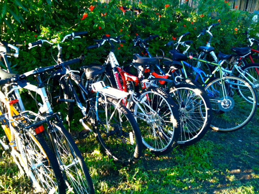 San Marcos: Tantra bicycles