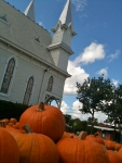 San Marcos pumpkin patch