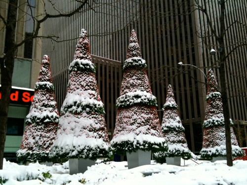 NYC: Snow-covered trees