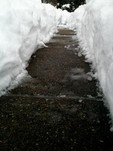 Sloveled Sidewalk