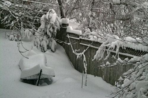 snOMG snow boat (i.e. hammock)