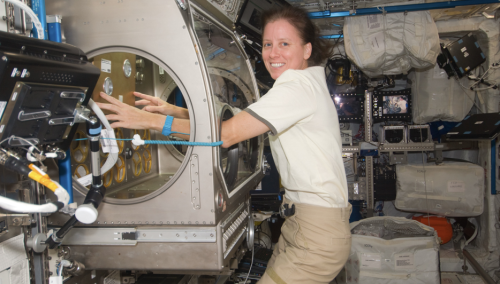 Astronaut Shannon Walker on Space Station using glovebox. Credit: NASA