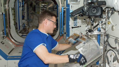 @Astro_Wheels works on science freezer in Space Station Destiny lab. Credit: NASA