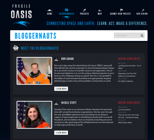 Preview of Fragile Oasis Bloggernaut page