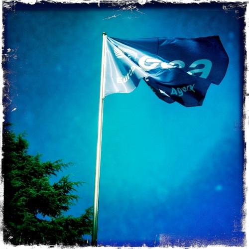 ESA flag
