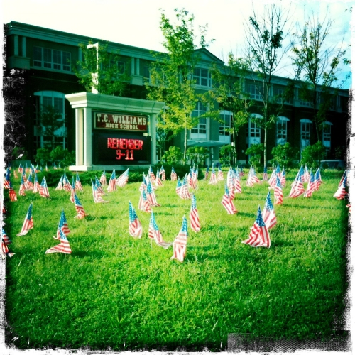 Cluster of American Flags in front of TC Williams High School in Alexandria, VA.