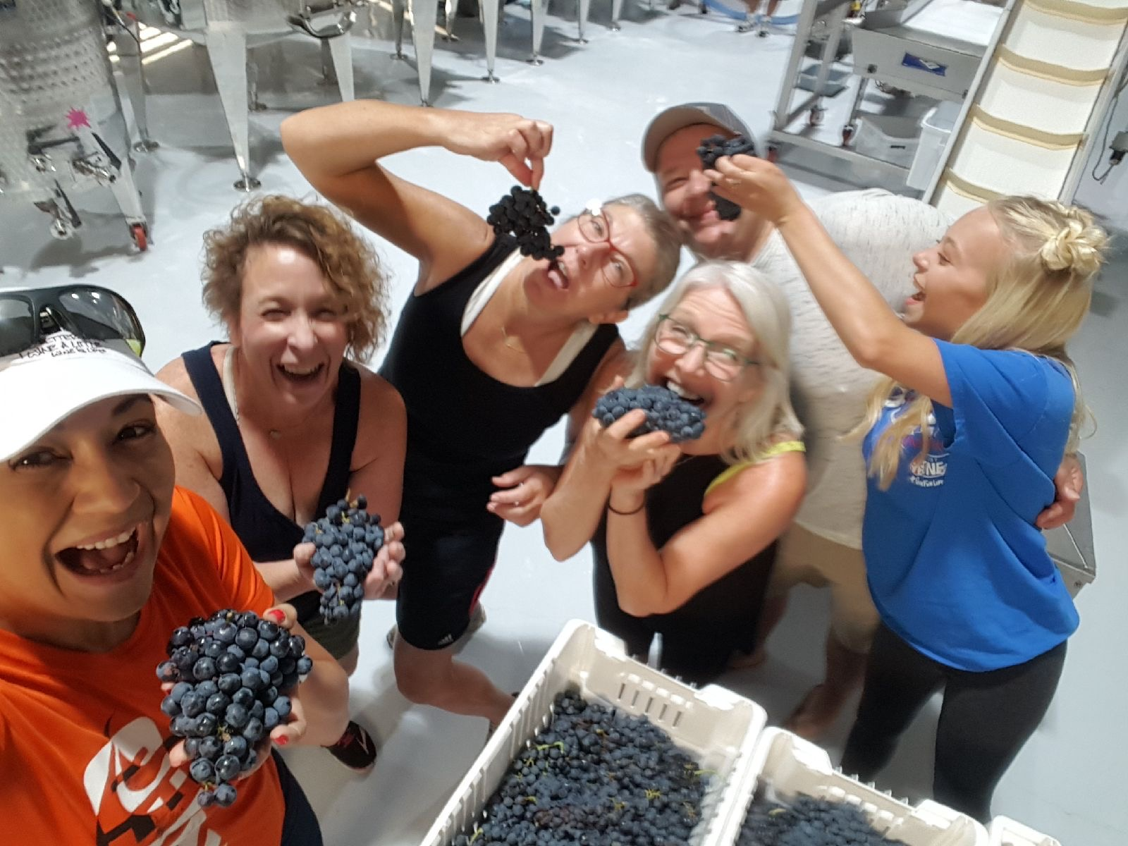 Awesome Eden Hill Tempranillo 2018 Crush Crew!